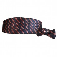 Striped Cummerbund Bow Tie Set